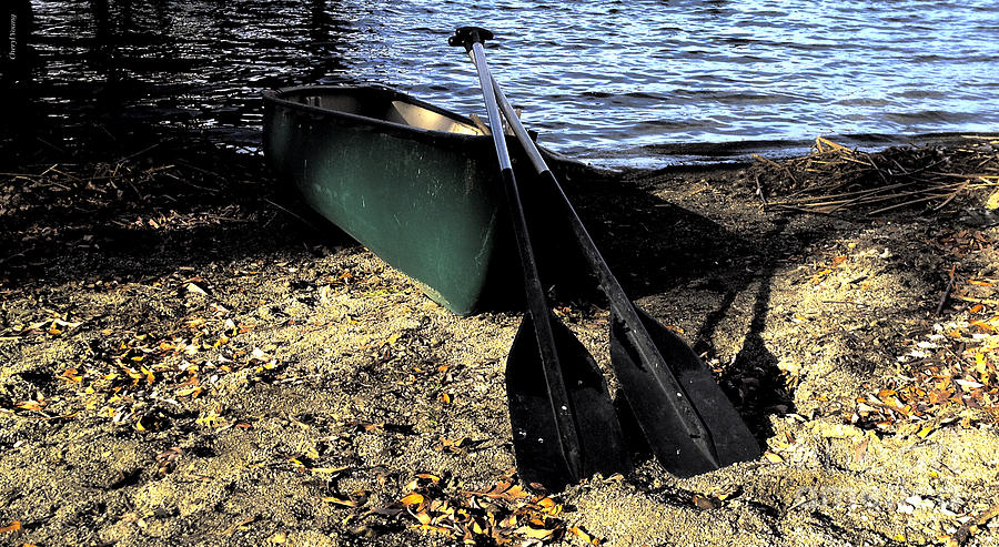 Canoe Photograph - Canoe by Cheryl Young