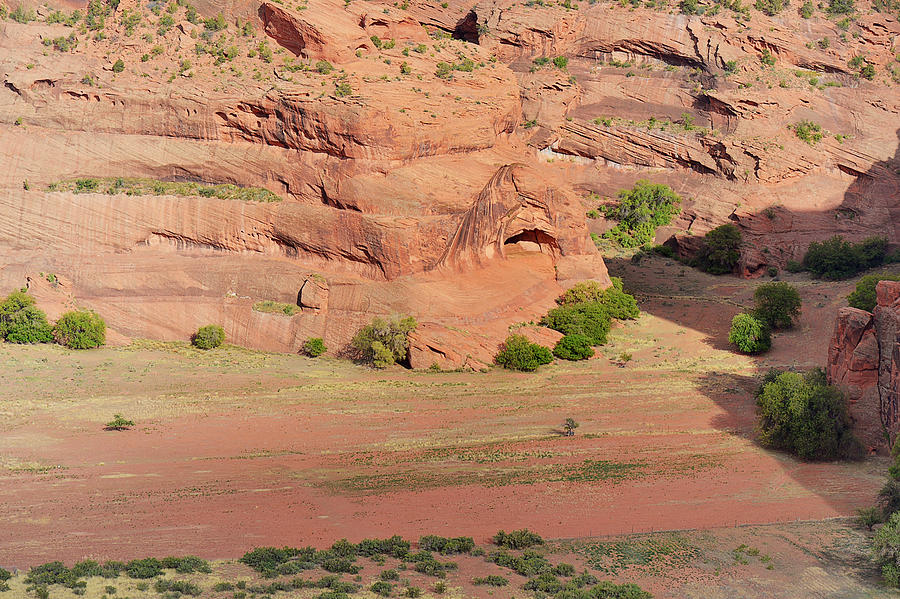Canyon De Chelly From White House Ruins Trail Photograph