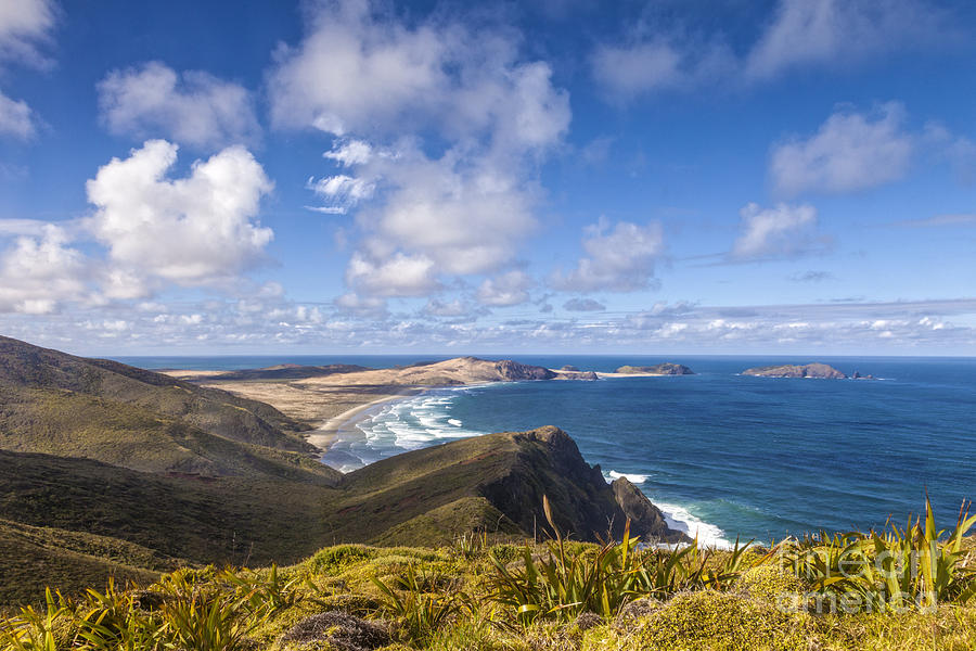 Cape Maria Van Diemen Northland New Zealand Photograph