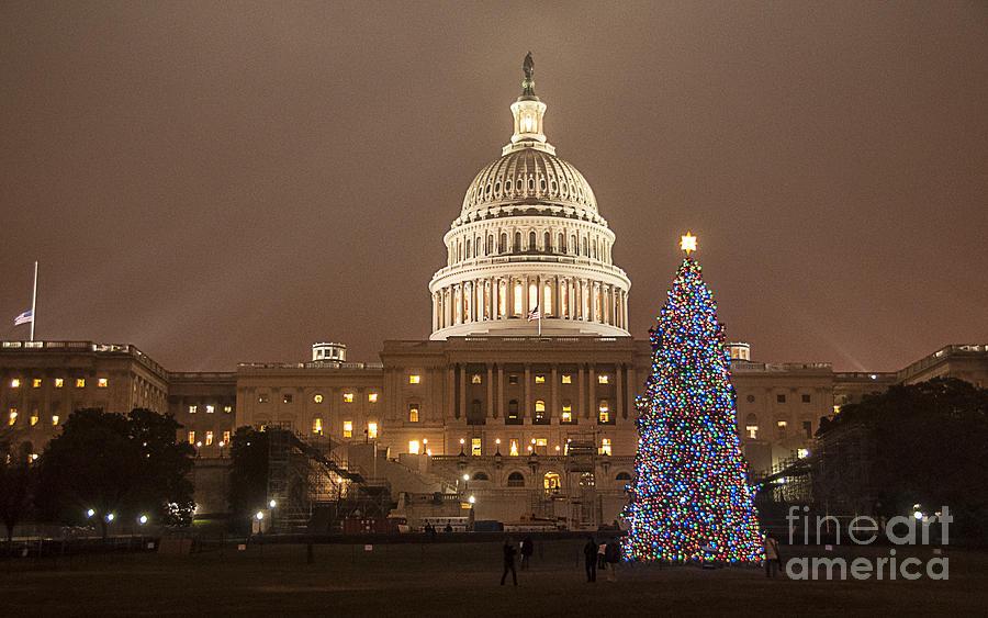 Capitol Christmas Photograph
