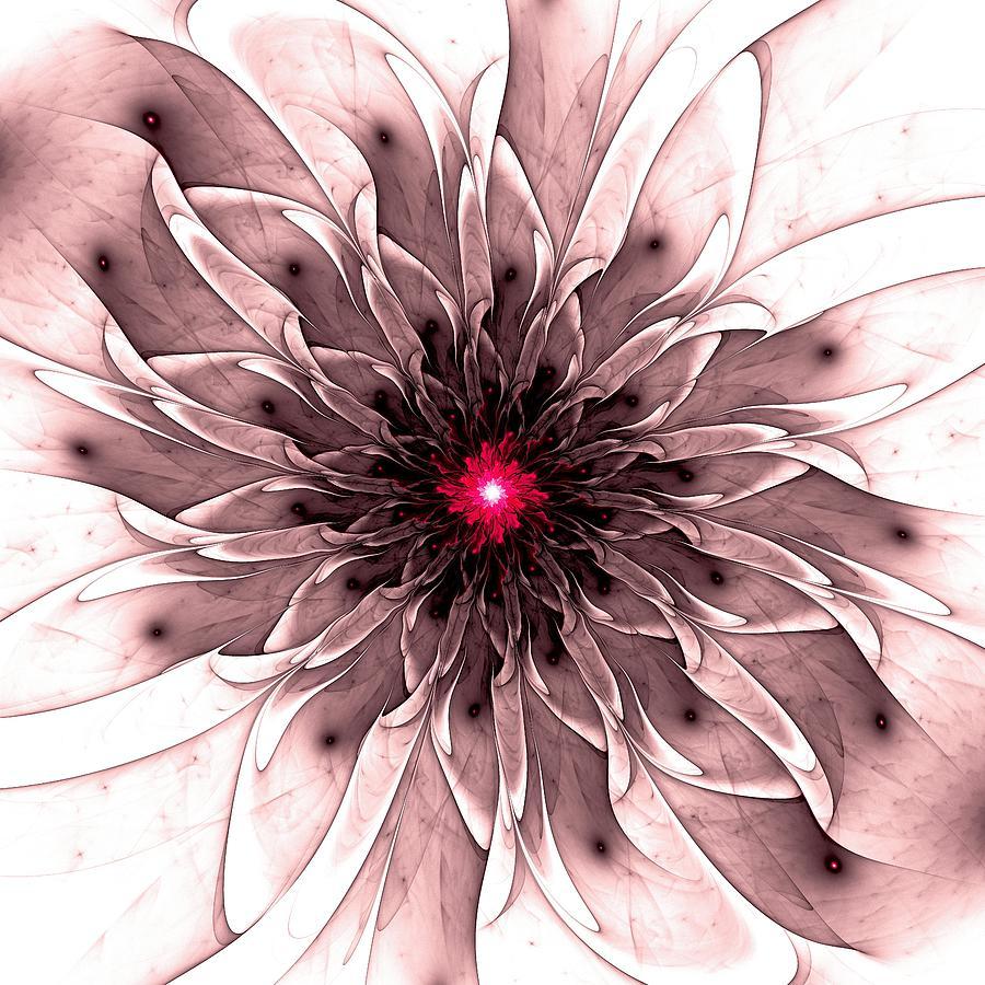 Captivating Digital Art