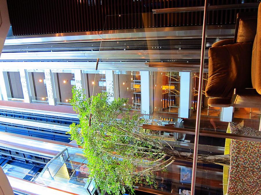 Cruise Photograph - Caribbean Cruise - On Board Ship - 121294 by DC Photographer
