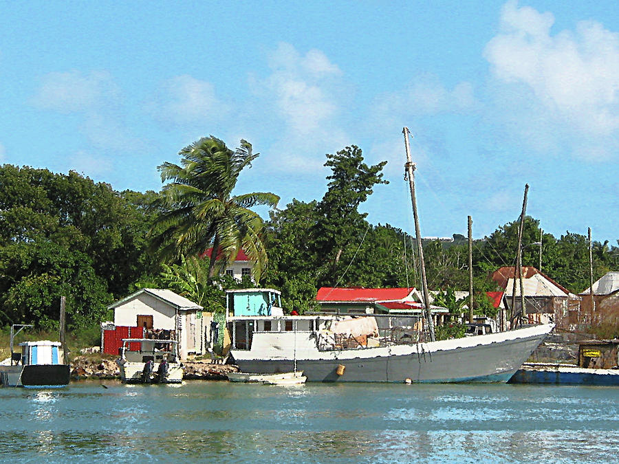 Caribbean - Docked Boats At Antigua Photograph