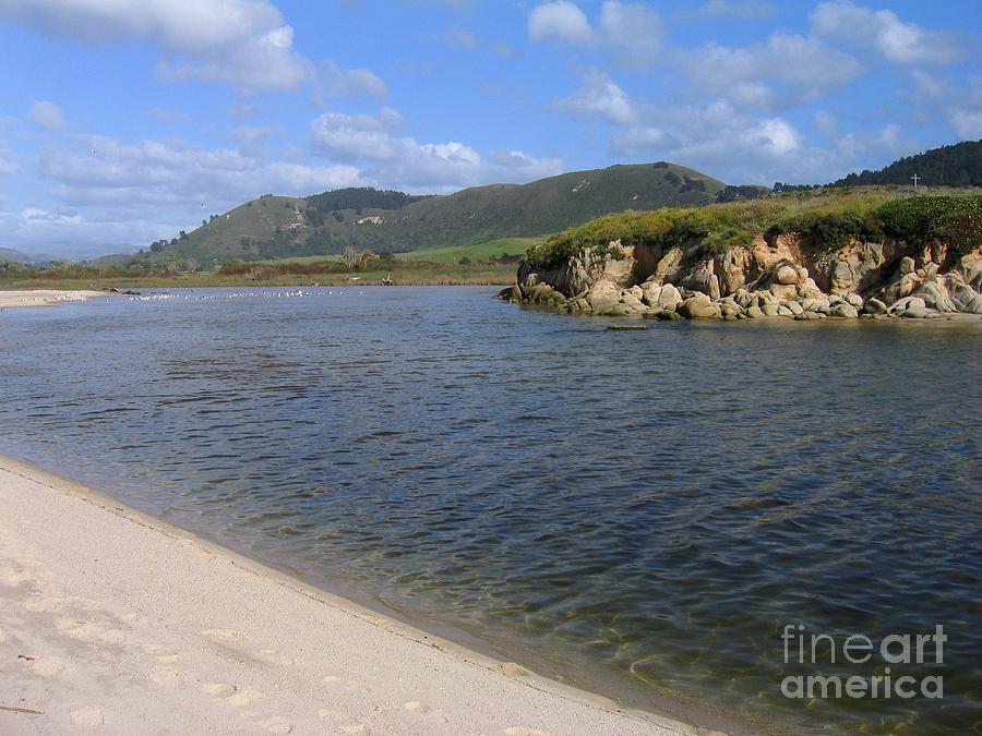 Carmel River Lagoon Photograph