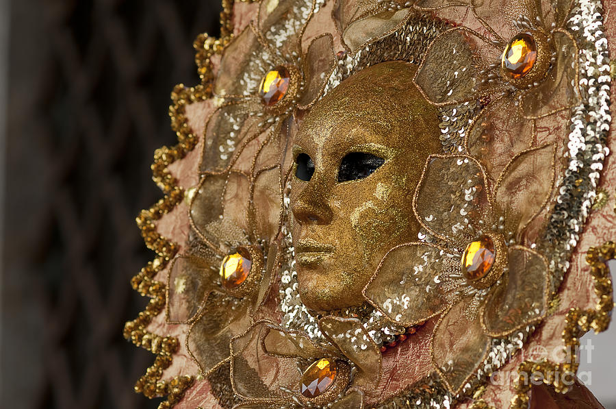 Olia Saunders Photograph - Carnival In Venice 8 by Design Remix