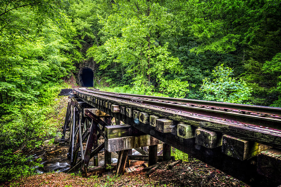 Andrews Photograph - Carolina Railroad Trestle by Debra and Dave Vanderlaan