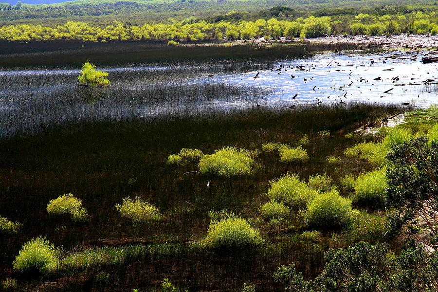 Carretera Austral River Photograph