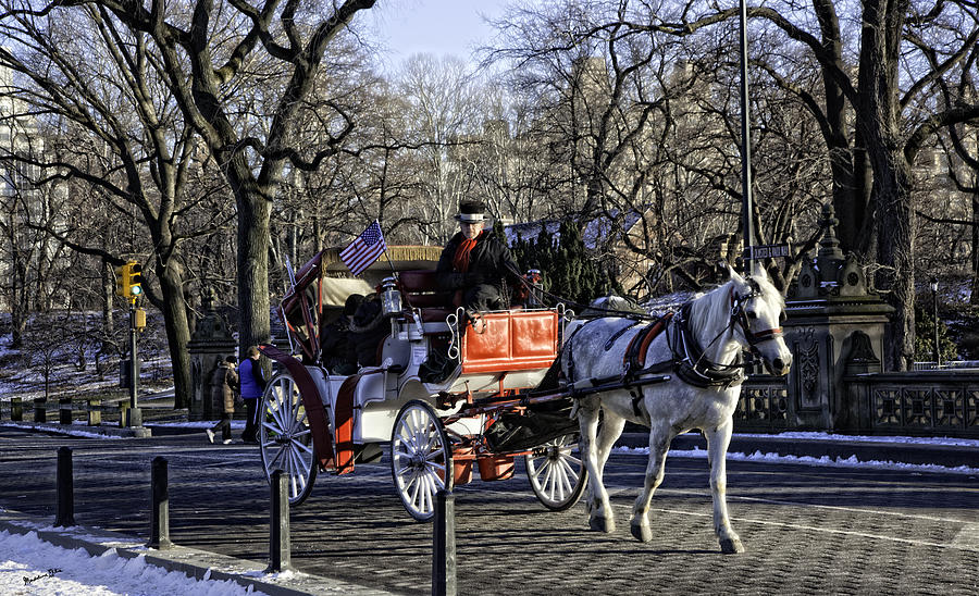 Carriage Driver - Central Park - Nyc Photograph