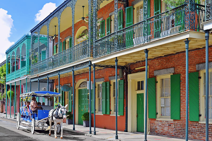 Carriage Ride New Orleans Photograph