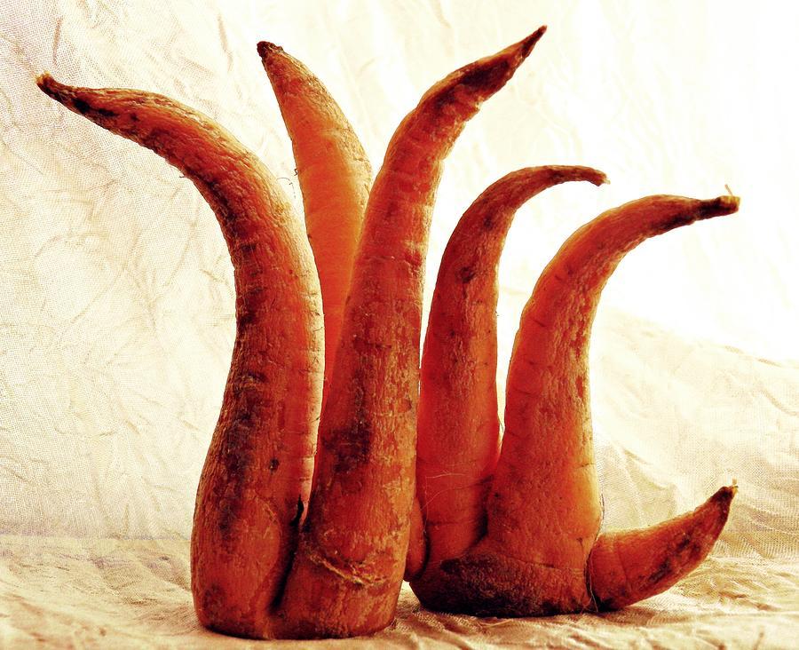 Carrot Sculpture 2 Sculpture