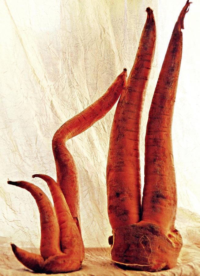 Carrot Sculpture 3 Sculpture  - Carrot Sculpture 3 Fine Art Print