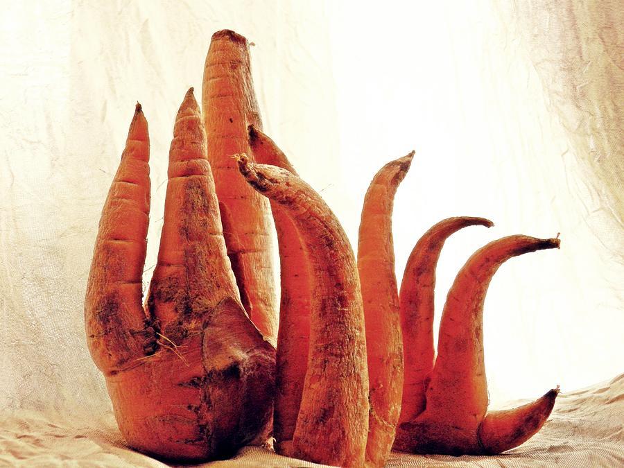 Carrot Sculpture Sculpture