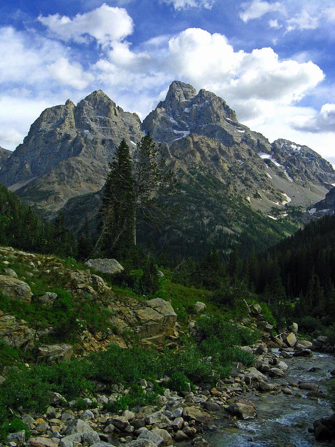 Cascade Creek The Grand Mount Owen Photograph