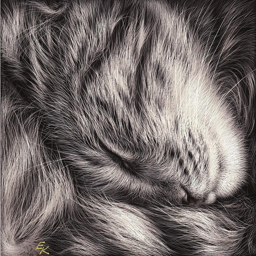 Cat Nap Mixed Media