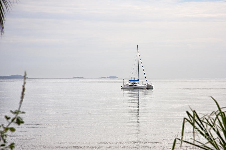 Catamaran On A Misty Morning Photograph  - Catamaran On A Misty Morning Fine Art Print