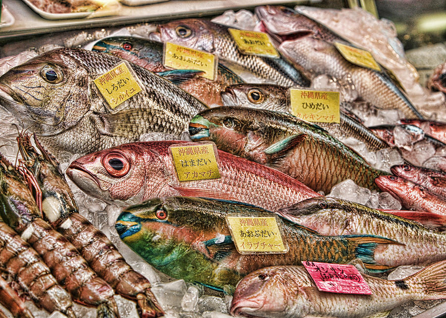 Fish Photograph - Catch Of The Day by Karen Walzer