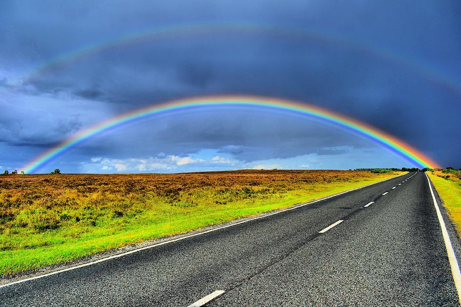 Catch The Rainbow Photograph