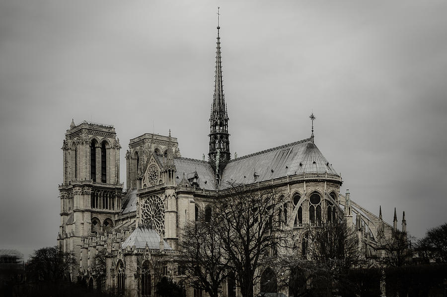 Notre Dame Photograph - Cathedral Of Notre Dame De Paris by Marco Oliveira