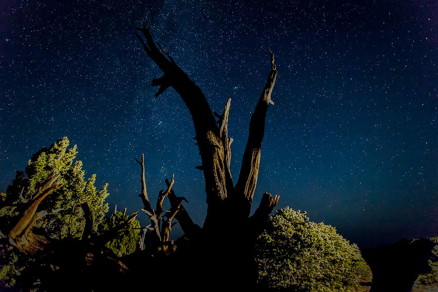 Utah Photograph - Cathedral Valley Night Sky by Jennifer Grover