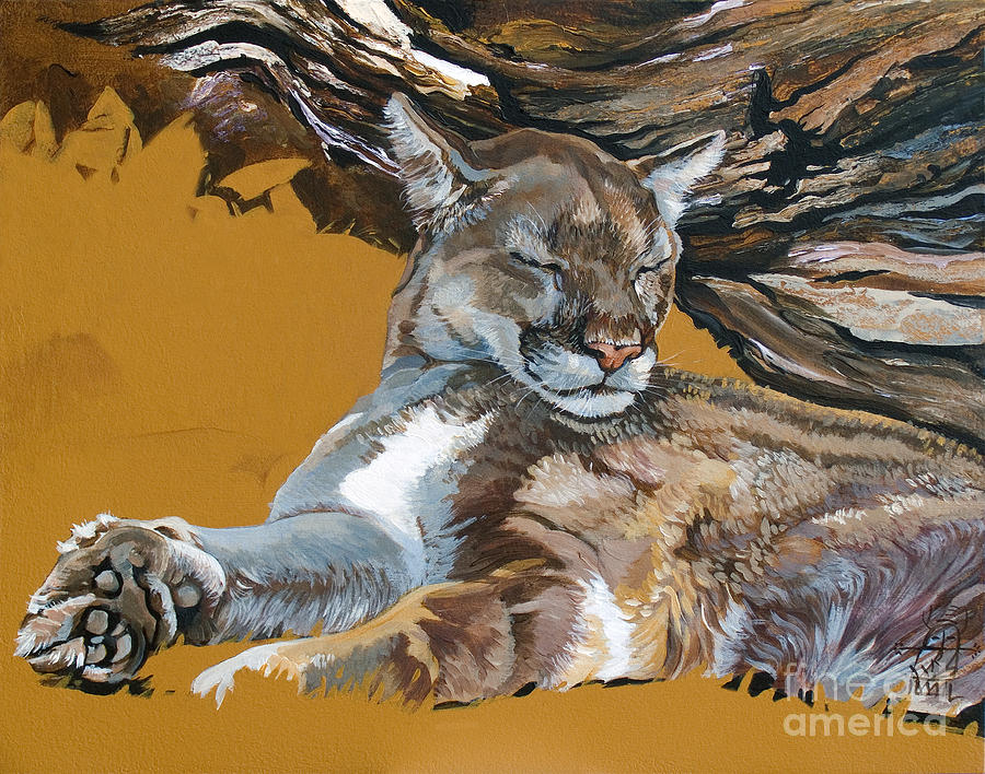 Catnap Painting