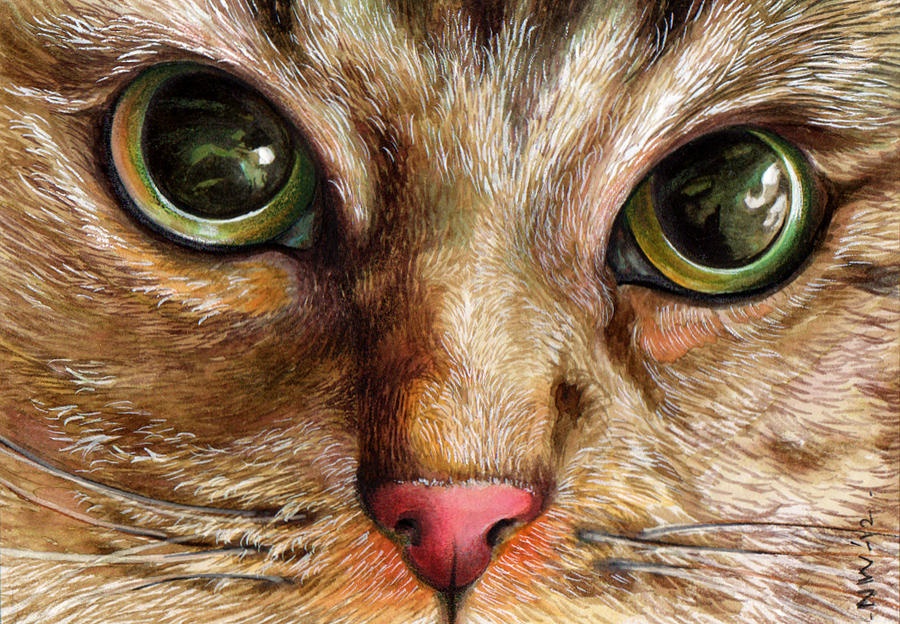How To Paint Cats Eyes In Oil