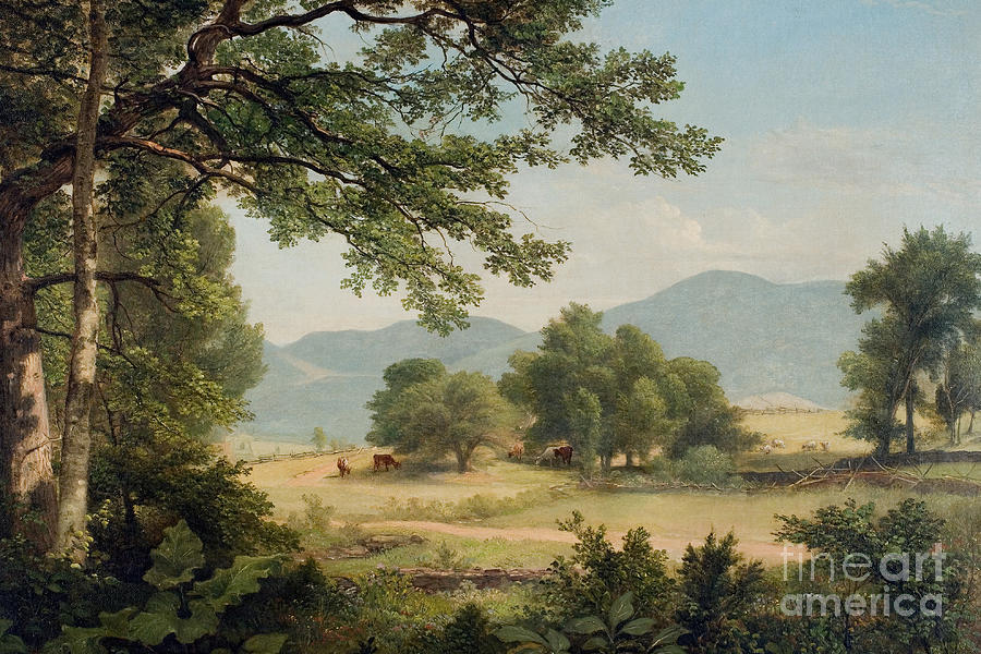 Catskill Meadows In Summer Painting  - Catskill Meadows In Summer Fine Art Print
