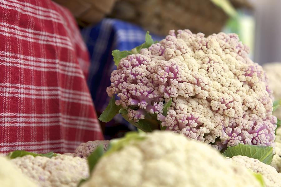 Cauliflower Photograph  - Cauliflower Fine Art Print