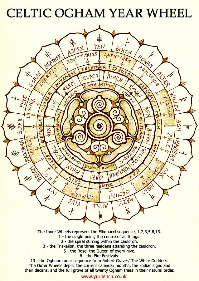 Celtic Calendar Wood : Celtic ogham year wheel drawing by yuri leitch
