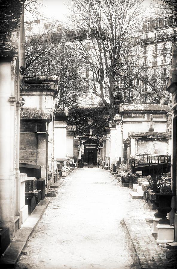 Cemetery Haze Photograph