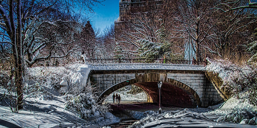 Central Park After Nemo Photograph