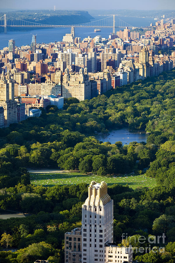 Central Photograph - Central Park by Brian Jannsen
