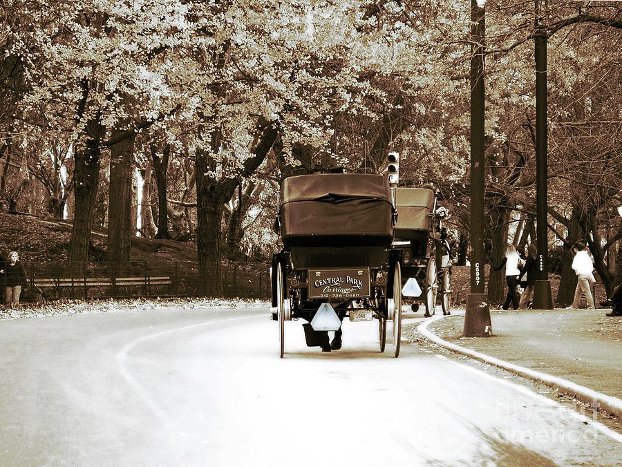 Central Park Ride Photograph