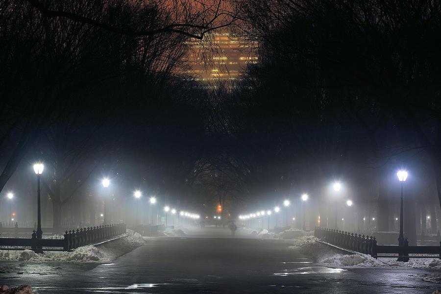 Central Park Shadows Photograph