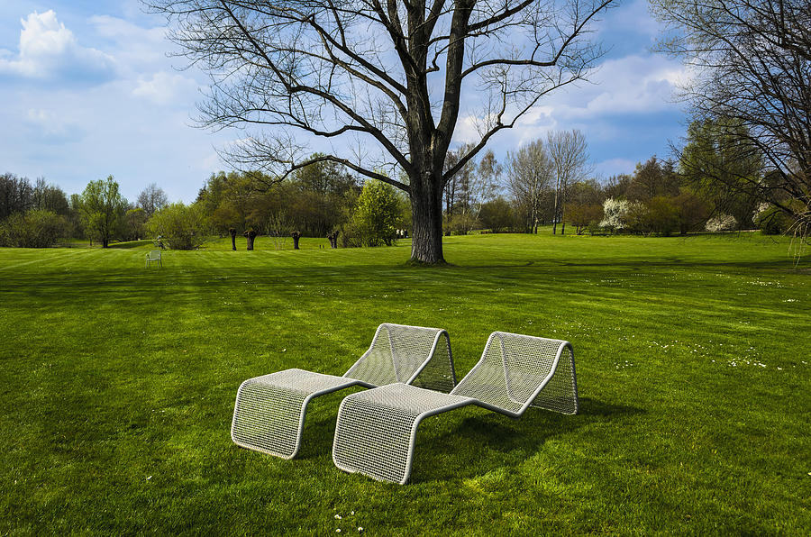 Chaises Longues On Grass Photograph  - Chaises Longues On Grass Fine Art Print