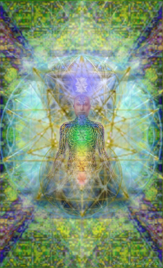 Chakra Tree Anatomy With Mercaba In Chalice Garden Digital Art