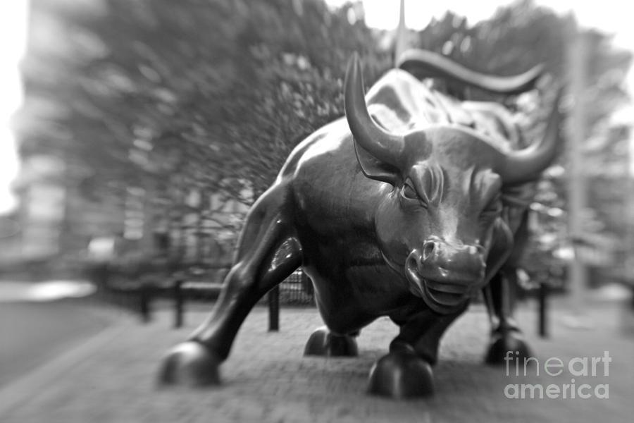 Charging Bull 3 Photograph