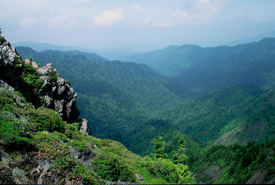 Great Smoky Mountains National Park Photograph - Charlies Bunion Gsmnp by Mary Elizabeth White