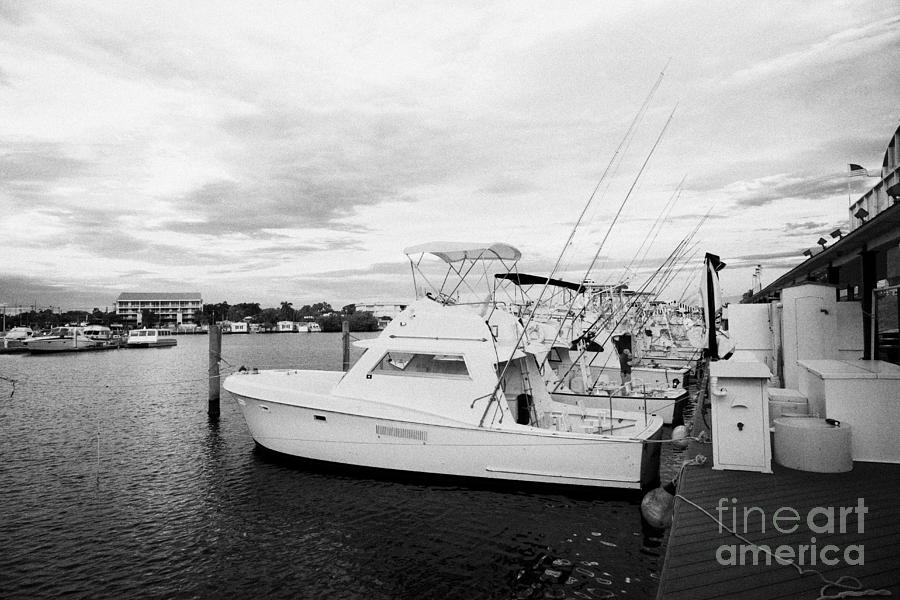 Charter Fishing Boats Charter Boat Row City Marina Key West Florida Usa Photograph  - Charter Fishing Boats Charter Boat Row City Marina Key West Florida Usa Fine Art Print