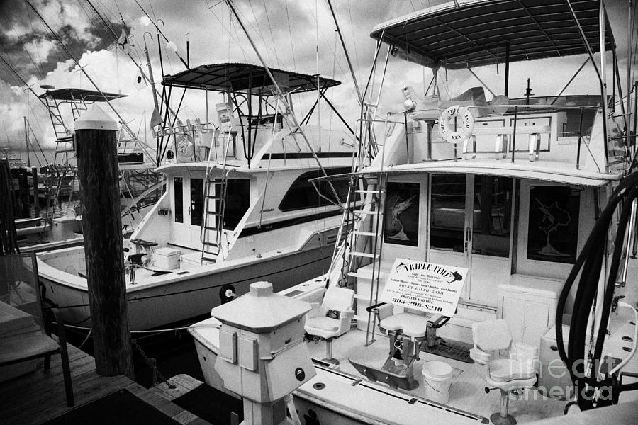 Charter Fishing Boats In The Old Seaport Of Key West Florida Usa Photograph  - Charter Fishing Boats In The Old Seaport Of Key West Florida Usa Fine Art Print