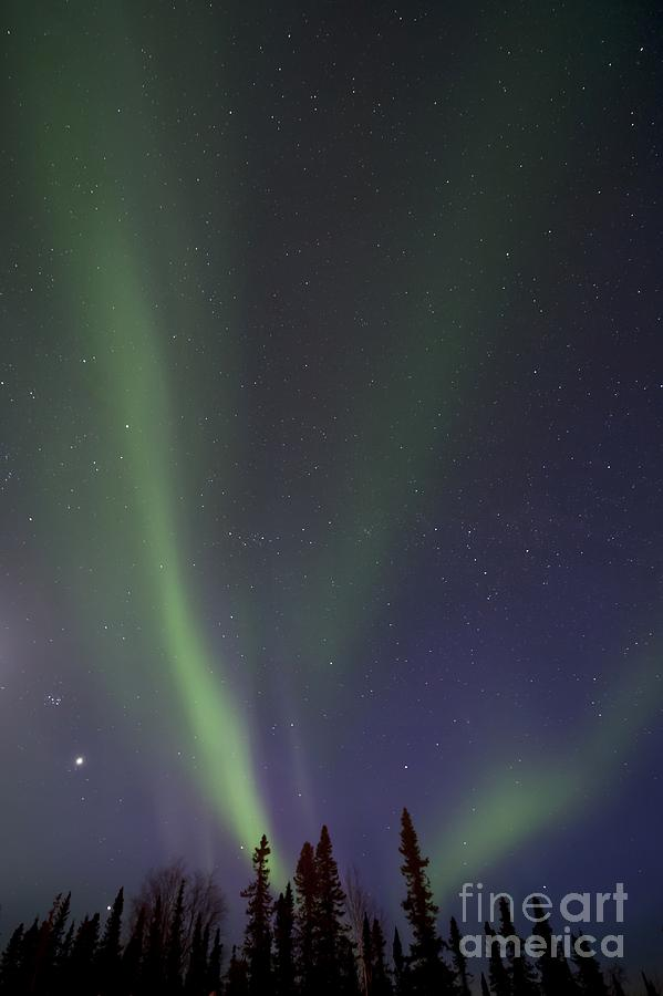 Northern Lights Photograph - Chasing Lights by Priska Wettstein