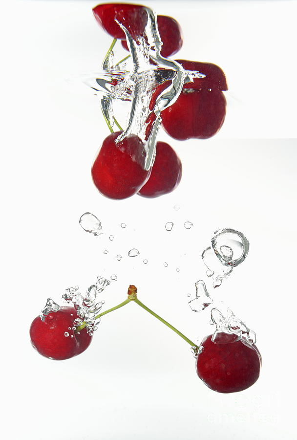 Cherries Fruits Splashing Underwater Photograph  - Cherries Fruits Splashing Underwater Fine Art Print