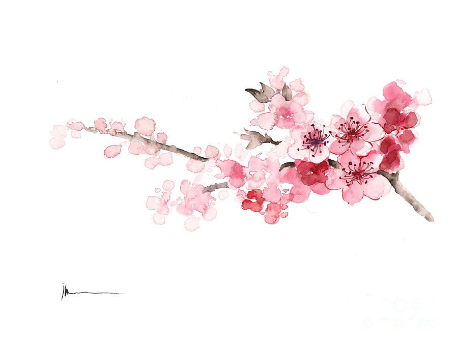 Cherry Blossom Art Print Watercolor Painting Painting by ...