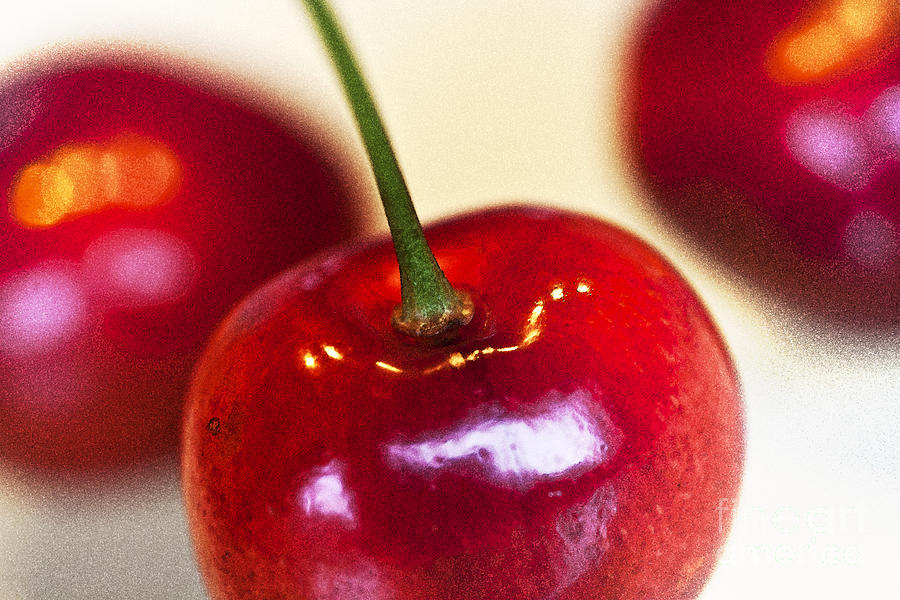 Cherry Still Life Photograph  - Cherry Still Life Fine Art Print