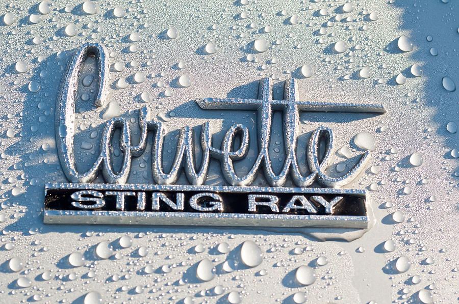 Chevrolet Corvette Sting Ray Emblem Photograph  - Chevrolet Corvette Sting Ray Emblem Fine Art Print