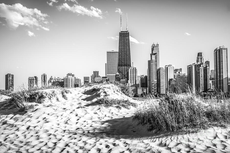 Chicago Beach And Skyline Black And White Photo Photograph