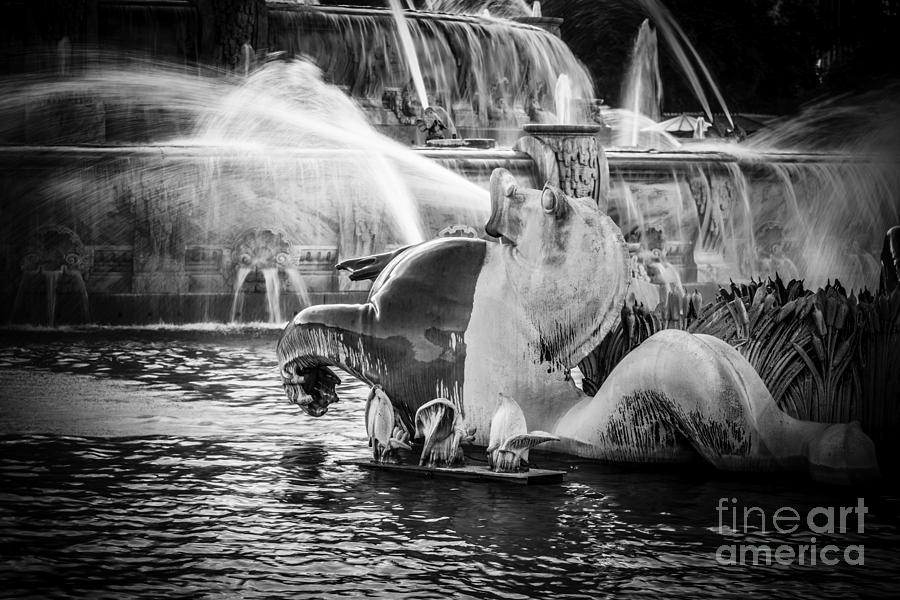 Chicago Buckingham Fountain Seahorse In Black And White Photograph