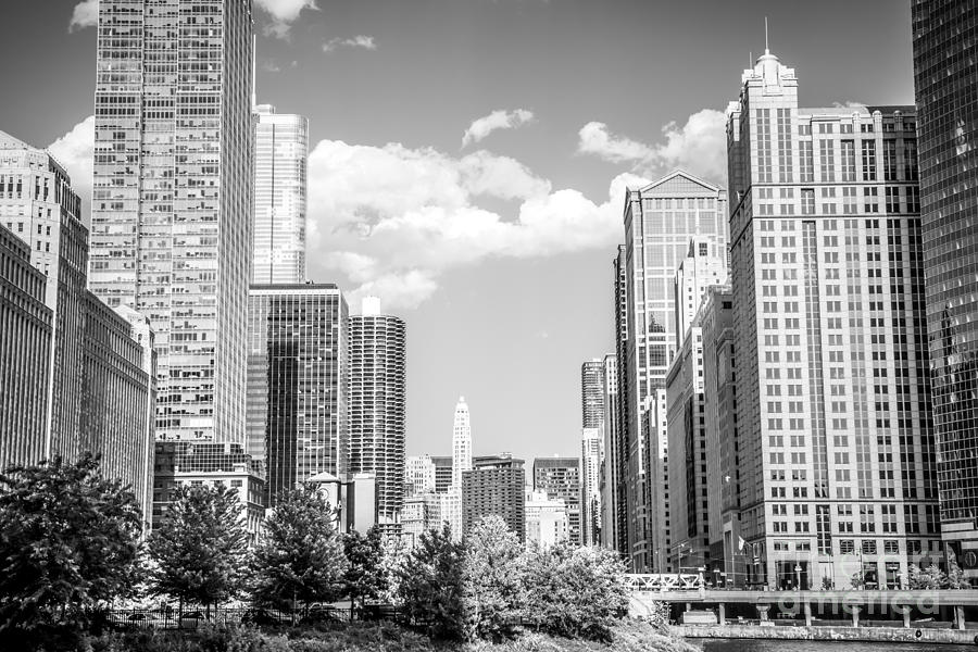 Chicago Cityscape Black And White Picture Photograph