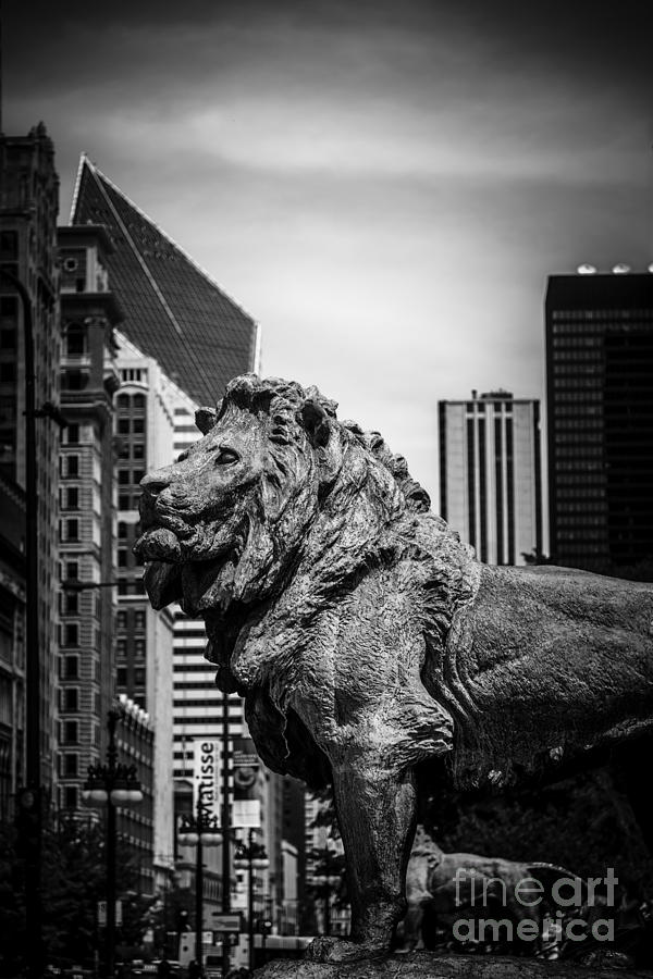 Chicago Lion Statues In Black And White Photograph  - Chicago Lion Statues In Black And White Fine Art Print