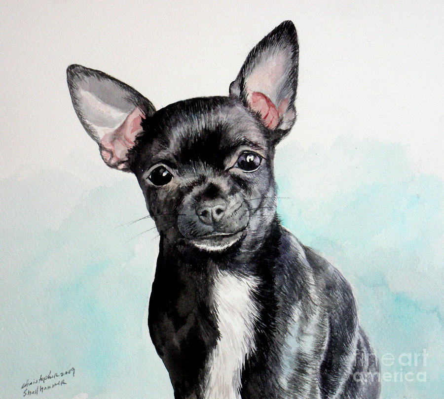 Chihuahua Black is a painting by Christopher Shellhammer which was ...