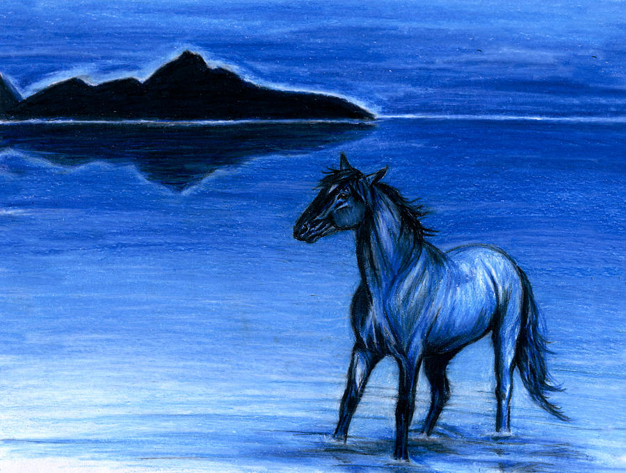 Horse Drawing - Chill by Risa Kent
